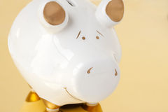 White and Gold Piggy Bank. A white and gold piggy bank on a gold background Royalty Free Stock Images