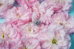 White gold ring with diamonds inside tender pink rose petals. Pink Rose and diamond ring nestled inside. Macro closeup Stock Photography