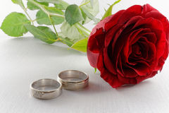 White gold wedding rings and red rose on white background Royalty Free Stock Photos