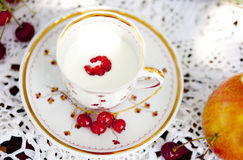 White and golden porcelain cup with milc and fresh berries - red currant, cherry Stock Photos