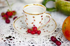 White and golden porcelain cup with plate and fresh berries - red currant, cherry Stock Photography