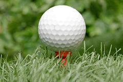 White golf ball on artificial turf Royalty Free Stock Images