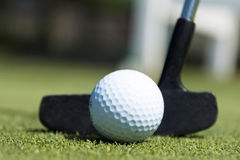 White golf ball and black putter Royalty Free Stock Photo