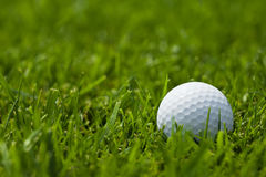 White golf ball on fairway close up Stock Photos