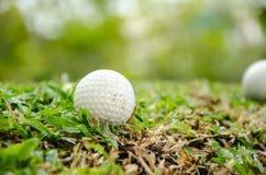 White golf ball Stock Photography