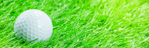 White golf ball is on grass Royalty Free Stock Photos