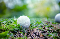 White golf ball Royalty Free Stock Images