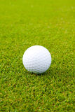White golf ball on green. White golf ball on the green field it's time for sport game Stock Photography