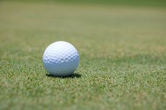 Golf Ball on Green. A white golf ball on the green of a course Stock Photo