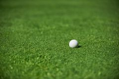 Golf ball close up Stock Images