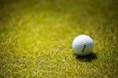 White Golf Ball on Green Grass stock photos