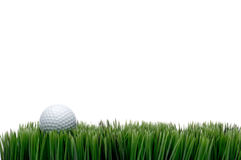 A white golf ball in green grass. Horizontal image of a white golf ball in green grass on a white background with space for copy Royalty Free Stock Photo