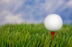 White golf ball on red tee Stock Images