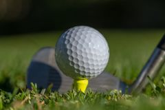 White golf ball teed up on a yellow tee with club face behind it and with soft green background royalty free stock photos