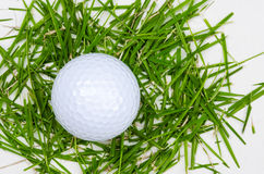 White golf ball top view on grass Stock Photos