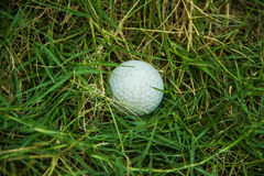 Golf on green grass background Royalty Free Stock Images