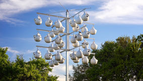 White Gourd Bird Houses Hanging From Pole Royalty Free Stock Photo