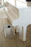 White grand piano Stock Photography
