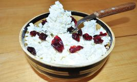 White granular curd in a bowl. With cranberries and a spoon Royalty Free Stock Photo