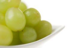 White Grape Closeup stock photography