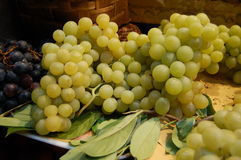 White grape cluster Royalty Free Stock Photography