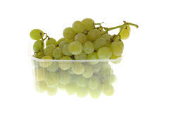White grape cluster Stock Photography