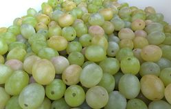 White grape Stock Photography