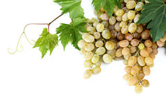 White grape with grapevine. Fresh white grape with grapevine on white background Royalty Free Stock Photography