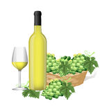 White grape juice Royalty Free Stock Photography