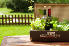 White grape and wine bottles. White grape and bottles of wine on wooden table in sunny garden Royalty Free Stock Photography