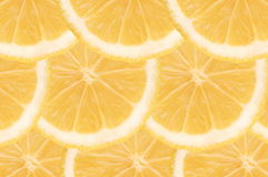 White grapefruit composition Royalty Free Stock Images