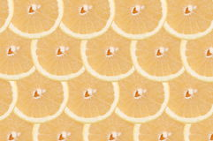 White grapefruit composition Royalty Free Stock Photos