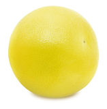 White grapefruit isolated on a white background Royalty Free Stock Photography