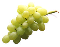 White grapes. Fresh white grapes on white background Royalty Free Stock Photography
