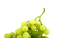 White grapes. Seasonal grapes with leaves on white Royalty Free Stock Photo