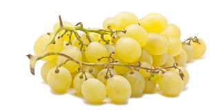 White grapes. Fresh white grapes from nature on white background Stock Images