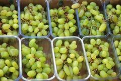 White grapes Royalty Free Stock Photo