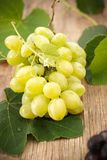 White grapes royalty free stock image