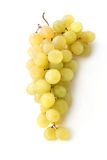 White grapes Royalty Free Stock Images
