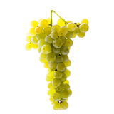 White grapes bunch Royalty Free Stock Images