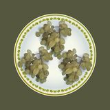 White grapes bunches on plate vector illustration Royalty Free Stock Image