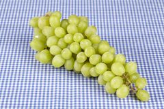 White grapes on a checkered tablecloth Royalty Free Stock Images