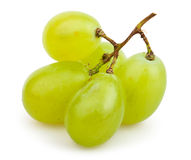 White grapes cluster small Royalty Free Stock Photos