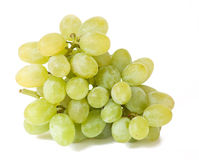 White grapes with droplets Stock Image