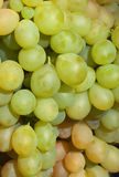 White grapes Royalty Free Stock Photo