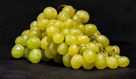 Free White Grapes From Biological And Bio Dynamic Agricolture Stock Photography - 160134912