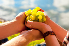 White grapes in the hand, sunlight Royalty Free Stock Photos