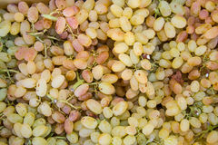 White grapes in local fruit market Royalty Free Stock Image
