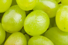 White grapes macro Stock Photo
