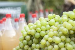White grapes for sale Royalty Free Stock Image